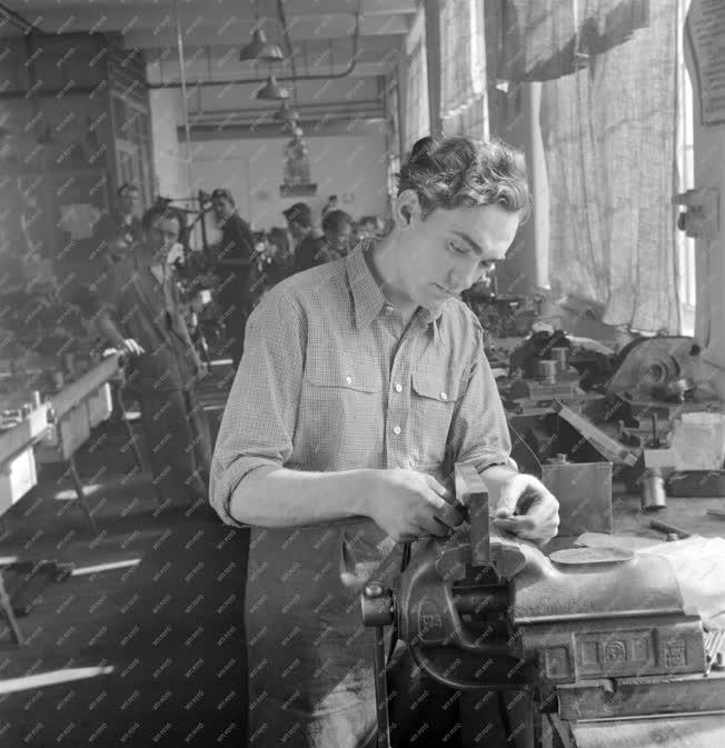 Ipar - A Standard Gyárban