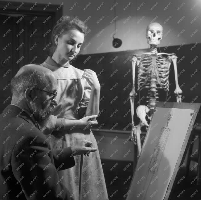 Művészet - Felsőoktatás - Barcsay Jenő anatómia órája