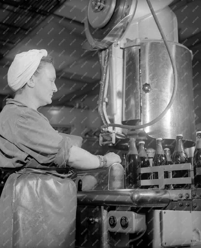 Élelmiszeripar - Szeszipar - Nagykanizsai Sörgyár
