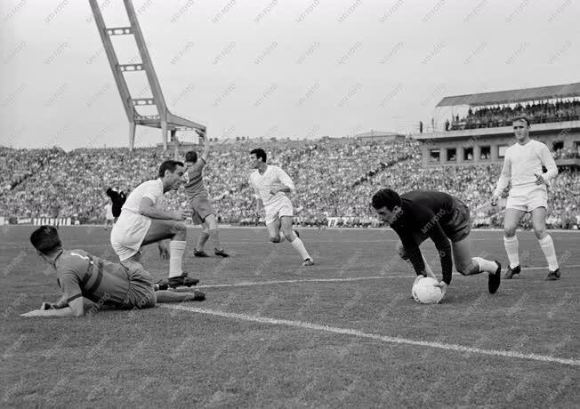 Sport - Labdarúgás - Vasas-Real Madrid