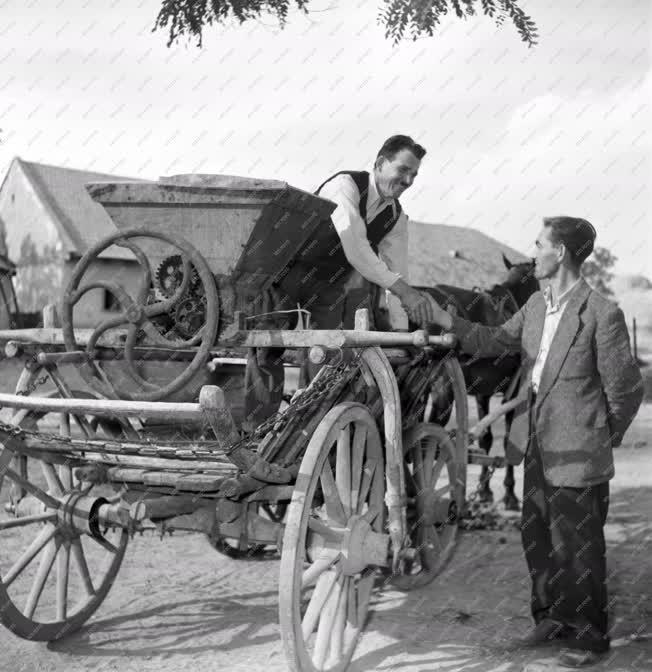 Mezőgazdaság - A verpeléti Földműves-szövetkezet