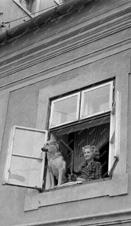 Ünnep - Május elsejei felvonulás Miskolcon