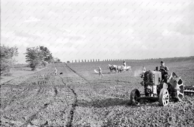 Mezőgazdaság - Talajelőkészítés