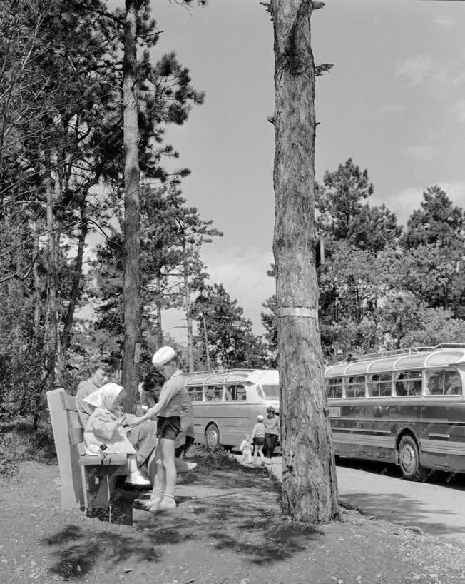 Turizmus - Pécsi autóbuszos kirándulás