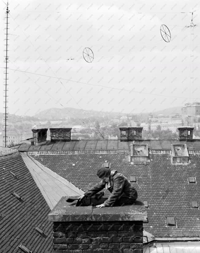 Foglalkozás - Pesti kéményseprők