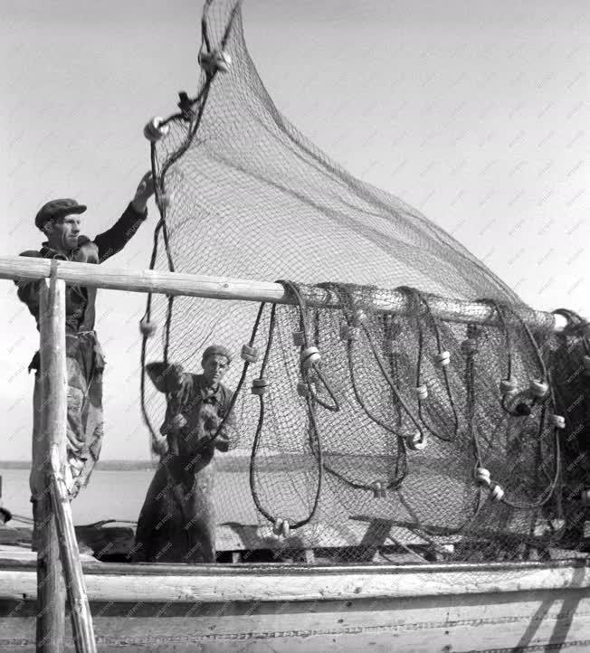 Mezőgazdaság - Balatoni Halászati Vállalat