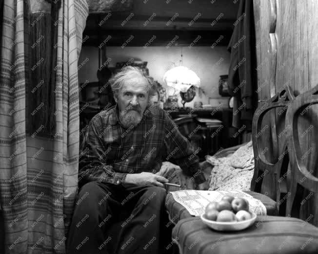 Művész portré - Dutka Ákos költő
