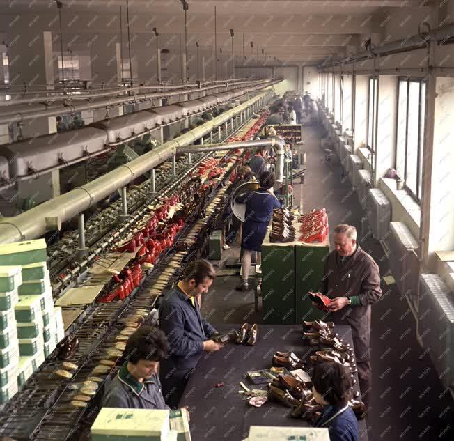 Ipar  - Cipőgyártás - En-ci cipők