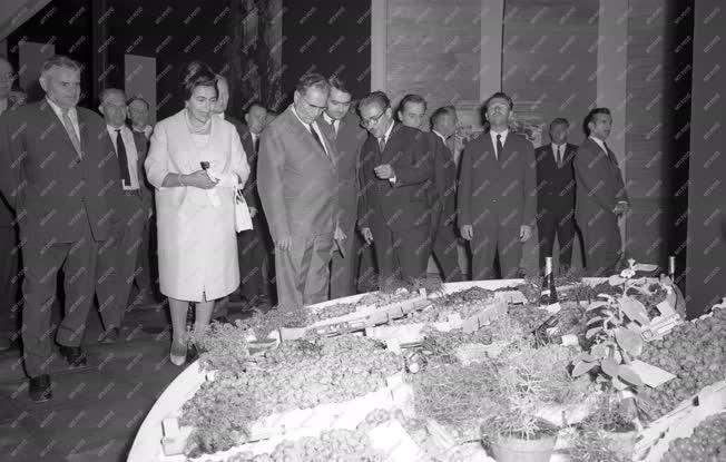 Külkapcsolat - Joszip Broz Tito jugoszláv elnök az Országos Mezőgazdasági Kiállításon