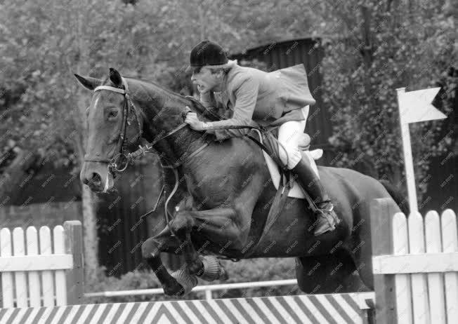 Lósport - Budapesti lovasbajnokság