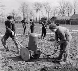 Mezőgazdaság -  Falusi Ifjúsági Szövetkezet