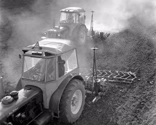 Mezőgazdaság - Sátorhely-Bólyi Állami Gazdaság