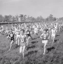 Sport - Atlétika - Országos mezei futóbajnokság