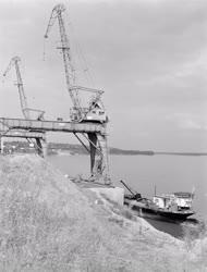 Ipar - Mohácsi Farostlemezgyár