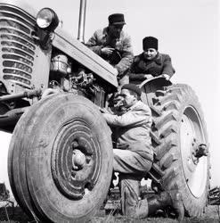 Mezőgazdaság - A peresztegi gépállomás