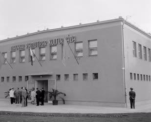 Kultúra - Magyar Pamutipar Dallos Ida Kultúrháza