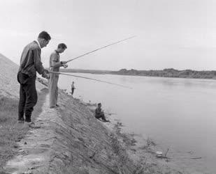 Sport - Szabadidő - Horgászok a Dunánál