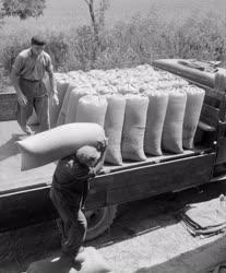 Mezőgazdaság - A Baki Állami Gazdaság magtisztító telepe