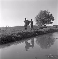 Mezőgazdaság - Halászat - Halak teleltetése