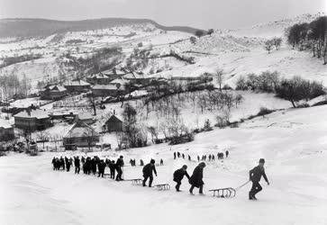 Szórakozás - Téli sportok