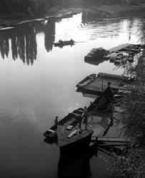 Természet-környezet - A győri Duna-part