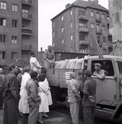 Élelmiszeripar - Az első kenyérgabona átadása