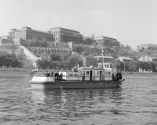 Közlekedés - A MAHART új hajótípusa