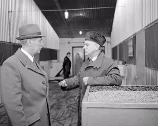 Belpolitika - Mezőgazdaság - Lázár György látogatása Bábolnán