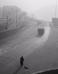 Időjárás - Ködös reggel a Duna-parton
