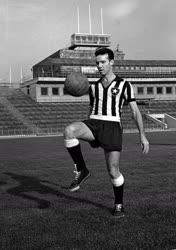 Mario Jorge Lobo Zagalo világbajnok brazil labdarúgó