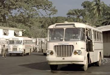 Guinea - Közlekedés - Ikarus busz