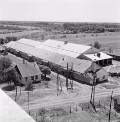 Mezőgazdaság - A lucernatisztító-üzem régi épületei