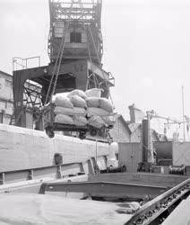 Közlekedés - Kereskedelem - Tengerjáró hajóba rakodnak
