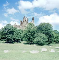 Kultúra - A salgói várrom