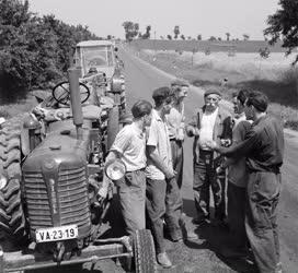 Mezőgazdaság - A Somogy megyei Növényvédő Állomás brigádja