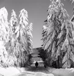 Időjárás - Tél a Mátrában