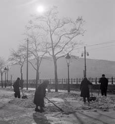 Életkép - Téli Dunapart