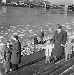 Időjárás - Tavasz a télben Budapesten