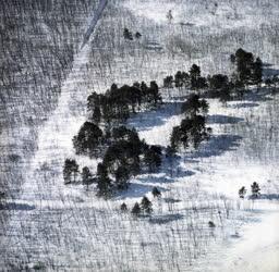 Tájkép - Időjárás - Havas táj