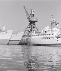 Közlekedés - Hajók a Dunán