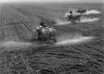 Mezőgazdaság - Dánszentmiklósi ÁG - Gépesített permetezés