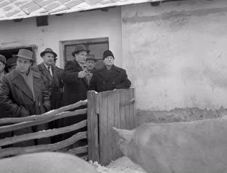 Belpolitika - Kádár János látogatása Barcson