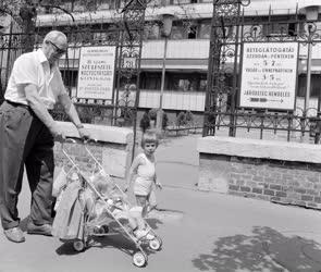 Életkép - Nagypapa unokákkal az Üllői úton