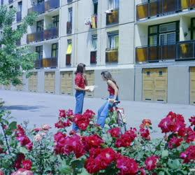 Városkép - Siklósi életkép