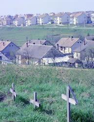 Városkép-életkép - Temető és lakótelep