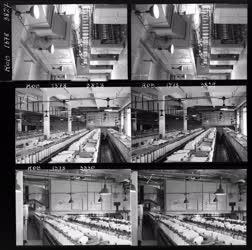 Ipar - Textilipari ózonizáló berendezés