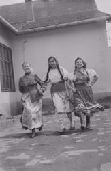 Kultúra - Eleki nemzetiségi művészeti együttes