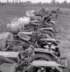 Mezőgazdaság - Lajta-Hansági Állami Gazdaság