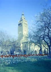 Városkép - Tulipánágyás a tanácsháza előtt