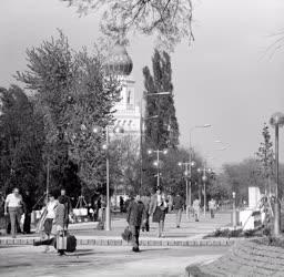 Városkép-életkép - Új sétálópark a kecskeméti városközpontban